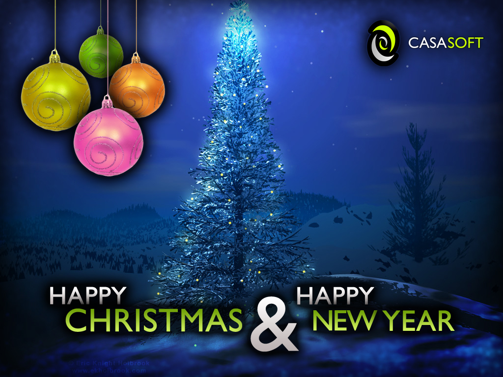 Happy Christmas & Happy New Year 2011